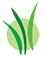 Latady Logo